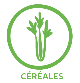 cereales.png